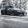 Lamborghi-Aventador-with-roof-luggage-rack-15.jpg