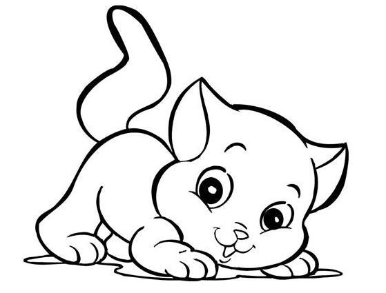 Frases Para Animais De Estimação 2 Quotes Links