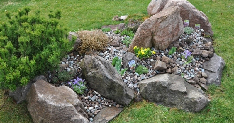 Squarciomomo cambiamenti nel giardino roccioso for Creare aiuole con sassi