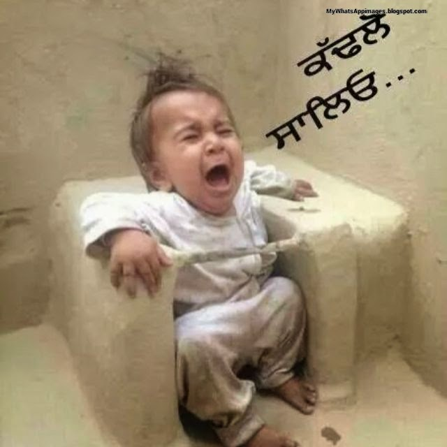 Sweet Babies funny image