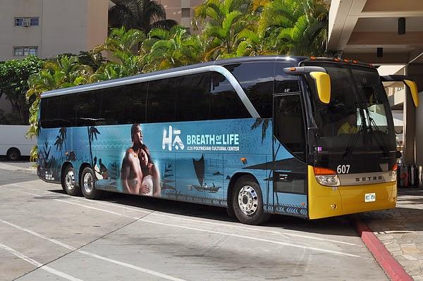 波里尼西亞文化村 Bus