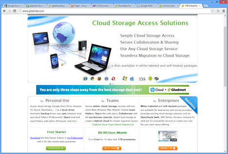1TB Cloud Storage - Secure Access, Sync and Collaboration - Google Chrome_2012-10-03_13-19-38