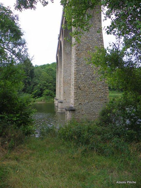 Loire à l'embouchure de l'Aix photo #384