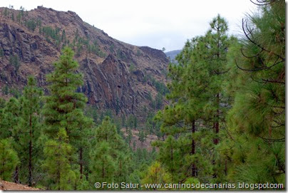 6971 Chira-Cruz Grande(Montaña Negra)