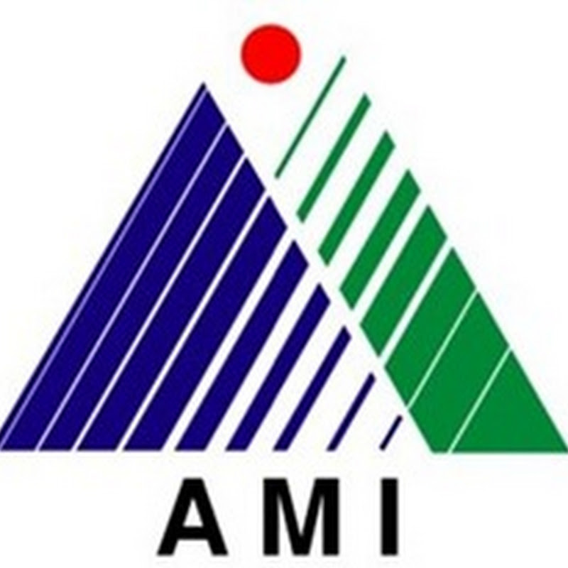 PT.Amoco Mitsui Indonesia