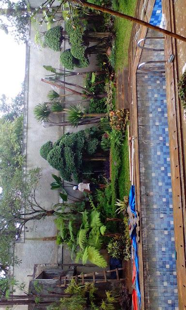 Renovasi taman rumah dengan harga murah