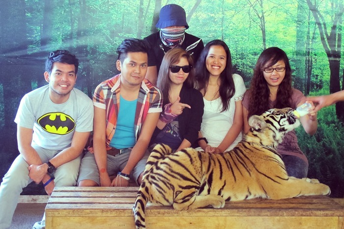 Photo Op with a Tiger Cub at Subic's Zoobic Safari