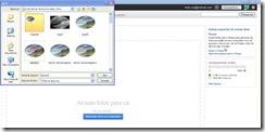 Imagem-lbuns da web do Picasa-selecionar