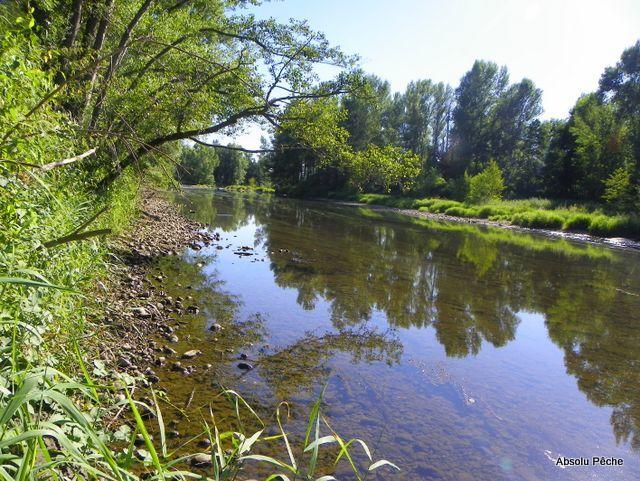 Loire rive droite en amont de Saint-Laurent-la-Conche photo #1192