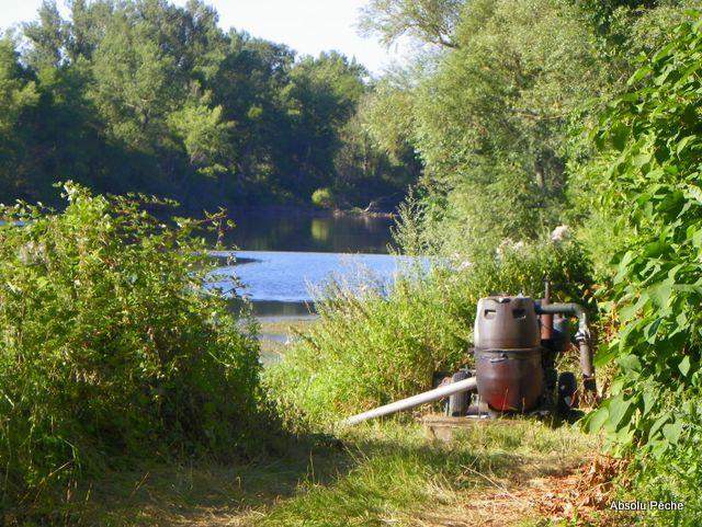 Loire rive droite aux Chambons à Marclopt photo #1222