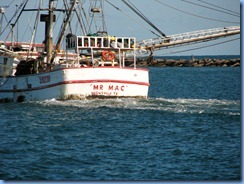 6990 Texas, South Padre Island - Osprey Cruises - Sea Life Safari  -  shrimper 'Mr. Mac'