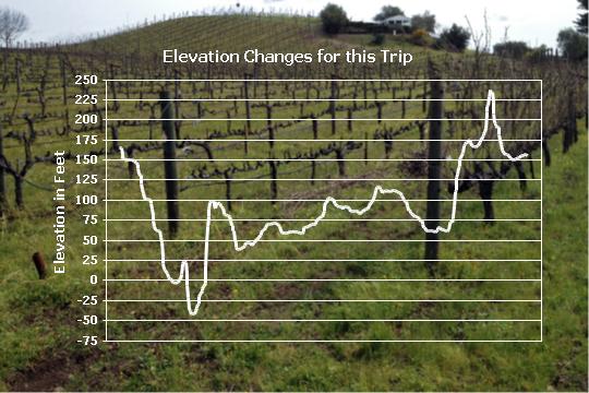 Altova StyleVision Chart