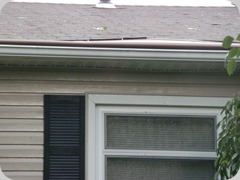 Gutter Helmet and shingle damage.