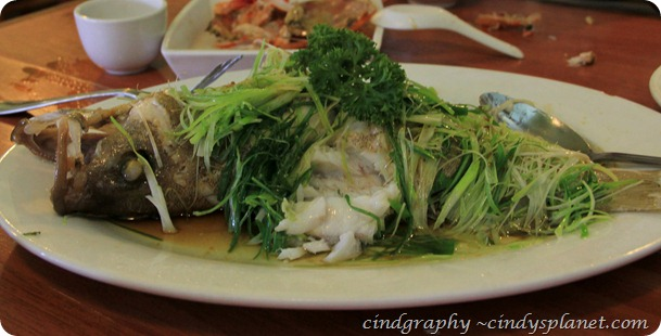 Lao Ta Kuta HongKong style Steam Fish