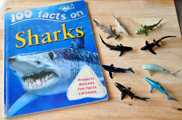 Sharks Unit I (FREE Skip Counting Cards)