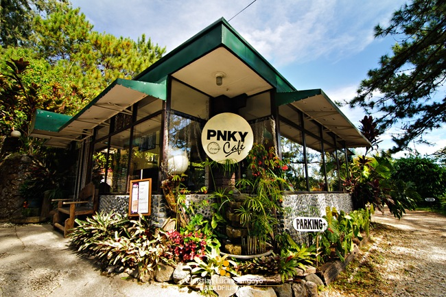 PNKY Travel Cafe in Baguio City