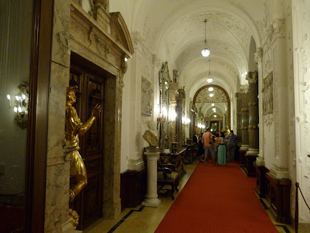 Palate Romania: Culoare Peles