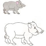 Colorea animales (18).jpg