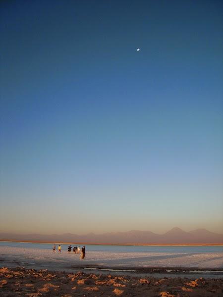 Excursie in Atacama, Chile: Ojos del Salar.