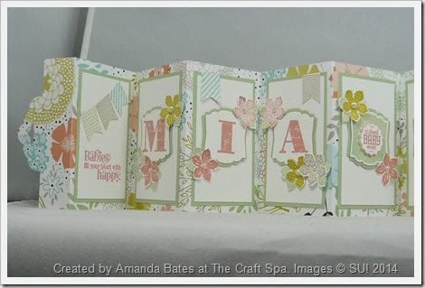 Scallop Tag Concertina Card,2014_03_Baby Girl Mia Ruby_ MIA (1)