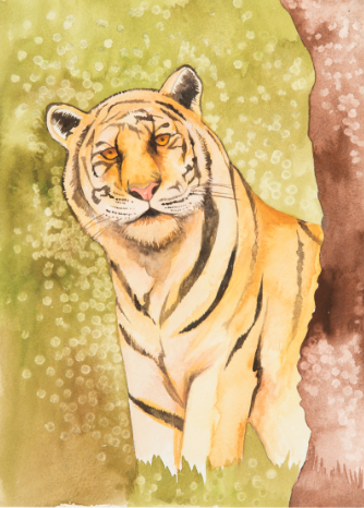 liz reilly tiger painting