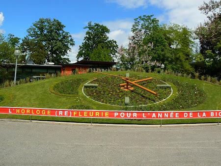 Obiective turistice Geneva: ceas floral