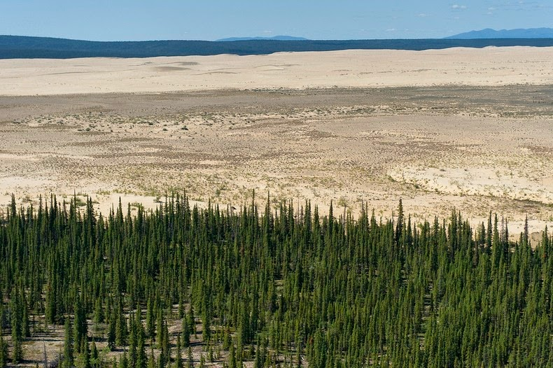 great-kobuk-sand-dunes-7
