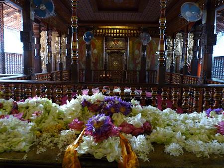 Imagini Sri Lanka: dintele lui Buda