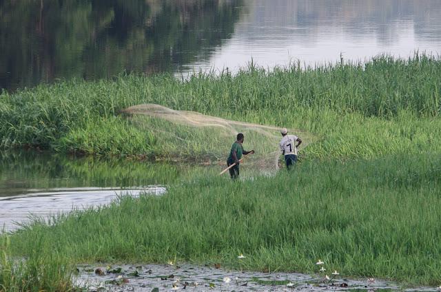 Pêche à l'épervier au bord de la Nyong. Ebogo (Cameroun), 28 avril 2013. Photo : C. Basset