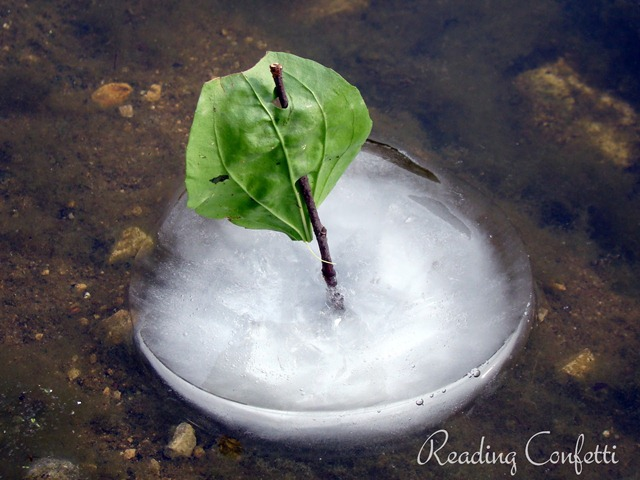 natural ice boats 11