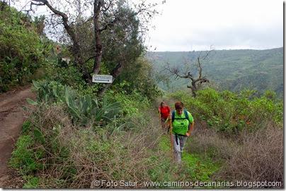 7001 Circular a Santa Brígida(Cuevas de los Gatos)