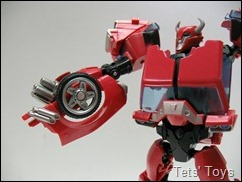Cliffjumper (17)