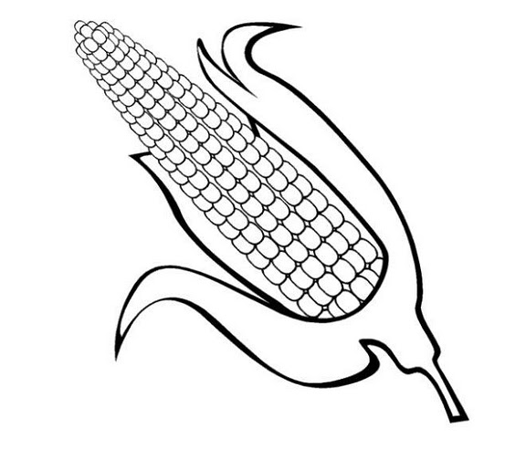 Printable vegetables Corn coloring page - Free Printable Coloring ... | 504x576
