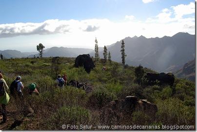 4851 Andenes de Tasarte