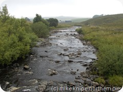 river tees near langdon beck