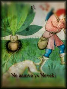 Ne aamve ys Neveki Cover