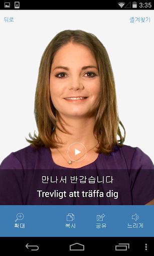 스웨덴어 비디오 사전