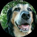 Image Google de LeBell Buck Cathy