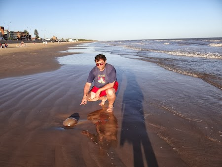 28. Plaja Uruguay - cu meduze.JPG