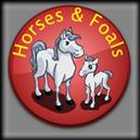 Farmville Horses and Foals