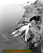 Bangladesh_Liberation_War_in_1971+21.png