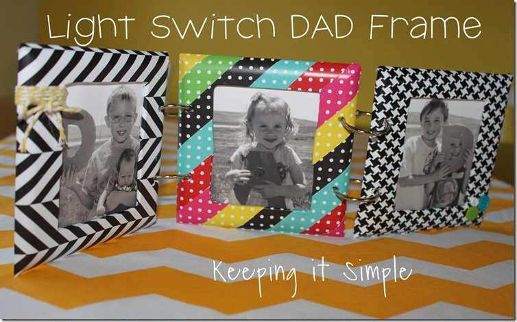 Light Switch DAD frame
