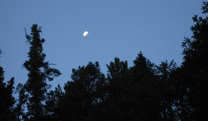 The Moon in Big Cottonwood Canyon