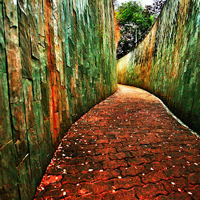 Red Brick Road of Oz by Shahrul A Hamid - City,  Street & Park  City Parks (  )
