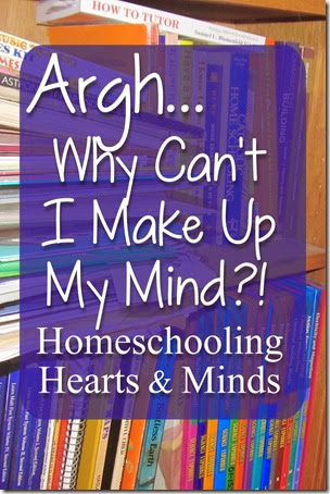 My ideal is not possible…and God's vision for our homeschool is sometimes hard to see.  Homeschooling Hearts & Minds