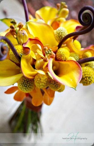 419996_277510508980873_156574431074482_774560_1090983103_n sophisticated floral designs