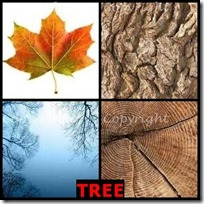 TREE- 4 Pics 1 Word Answers 3 Letters