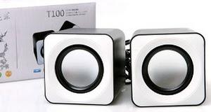 Loa LP T100