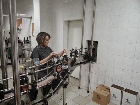 Vin de Bostavan: Linie imbuteliere vinuri