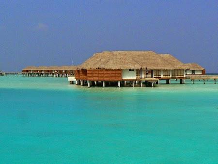 08. Albastru de Maldive.JPG